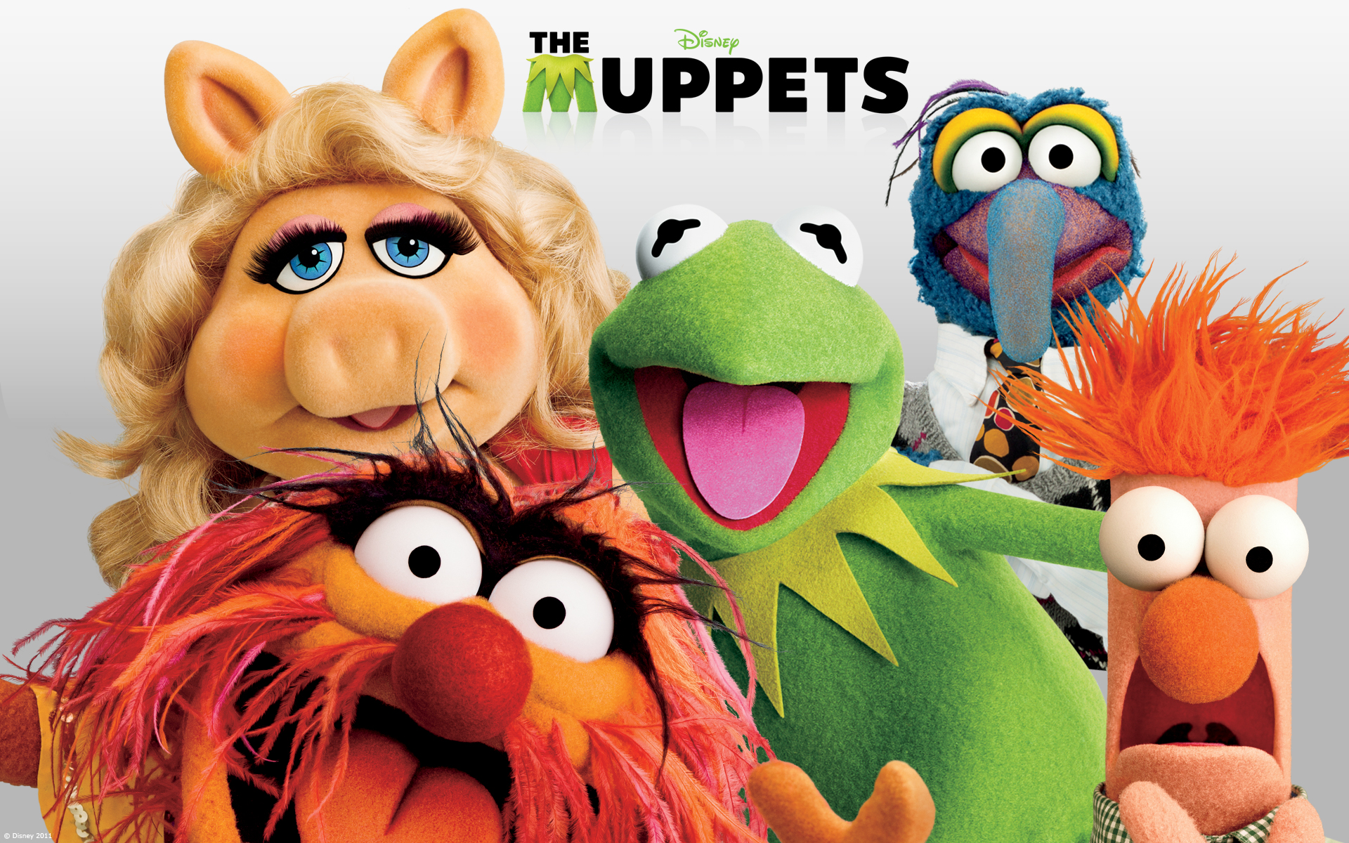 double feature the original muppet movie and the muppets